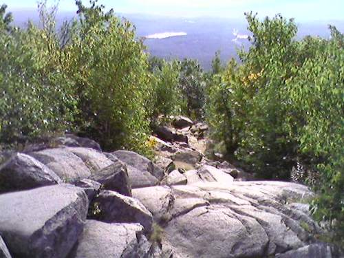 View from the White Dot Trail